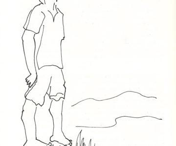 Solsticio Ilustración de Julián Ugarte